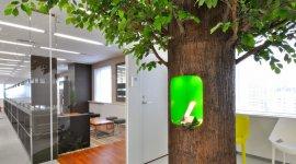 オフィスの象徴としての樹『カシワバラツリー』を設置しました。